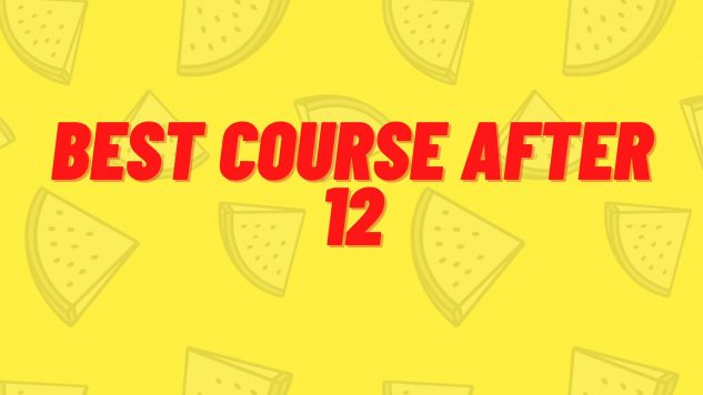 Best courses after 12
